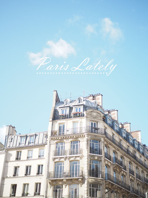 Paris Lately - Anine bing and other new discoveries